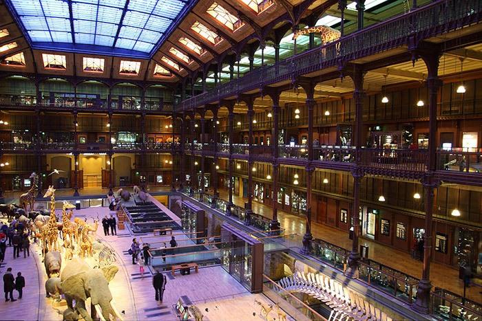 Выставочный павильон национального музея естественной истории.