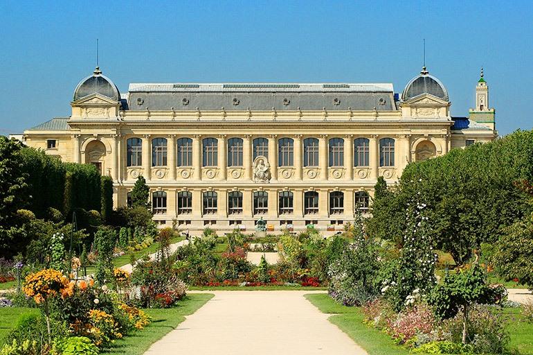 Национальный музей естественной истории Париж